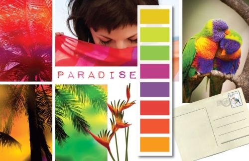 color paradise