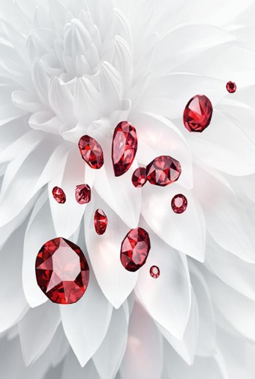 swarovski-scarlet